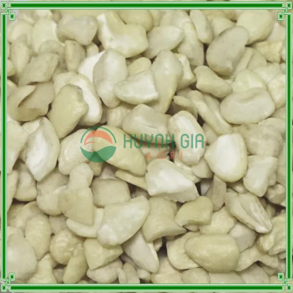 cashew-sp